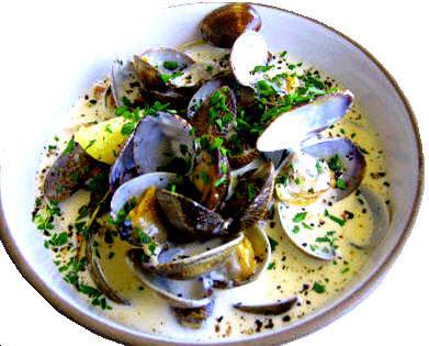 clam chowder mediterranea
